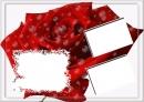 Didelė raudona rožė