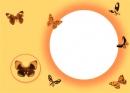 Spalvoti drugeliai
