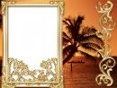 Palmė ir saulėlydis