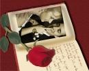 Raudona rožė ir knyga