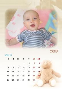Dvylikos lapų kalendorius 14